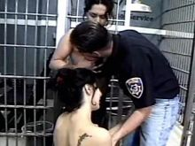 Lustful shemales in stockings seduce policeman